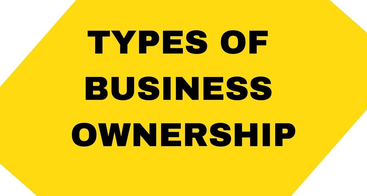 Types of Business Ownership In South Africa