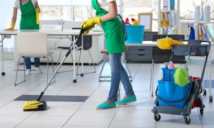 Starting a Cleaning Services Business in South Africa – Business Plan (PDF, Word & Excel)