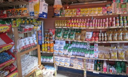 Starting a Spaza Shop Business in South Africa – Business Plan (PDF, Word & Excel)